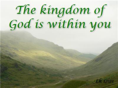 the kingdom regarding fin articles