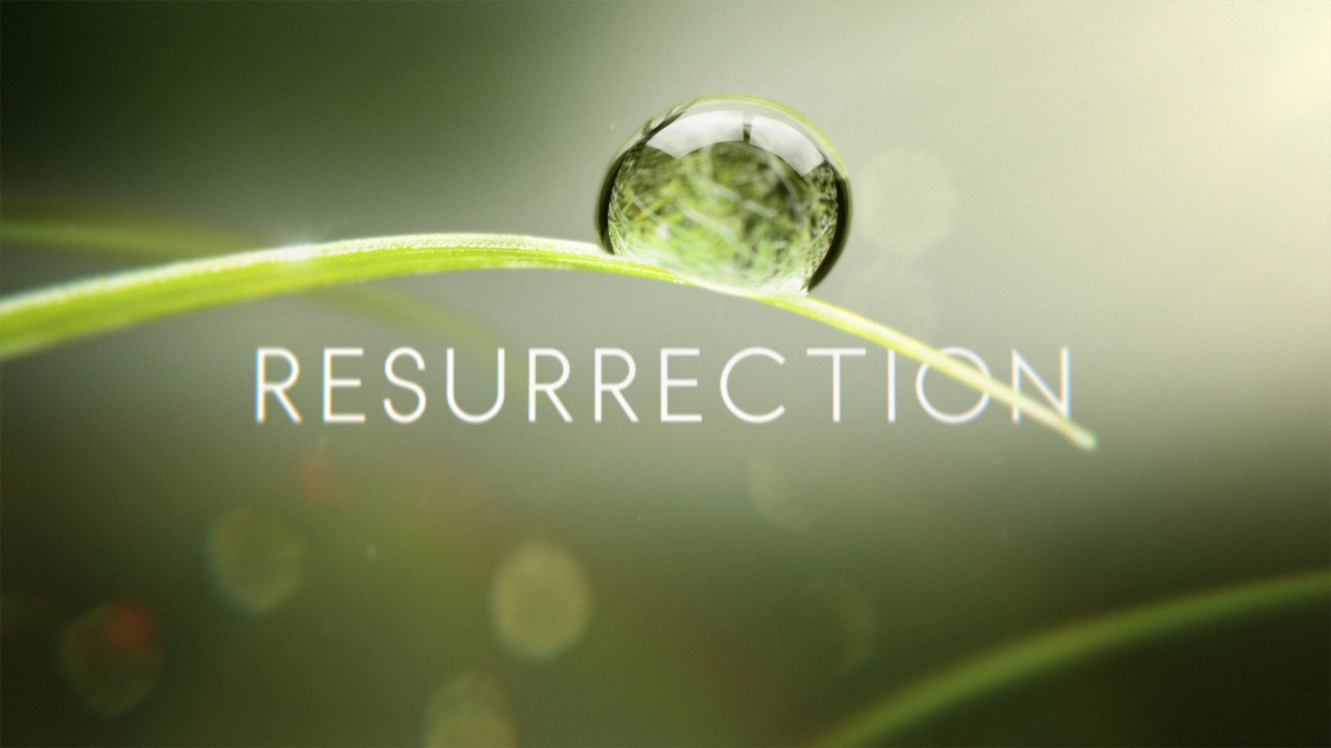 resurrection at the sound of the Trumpet
